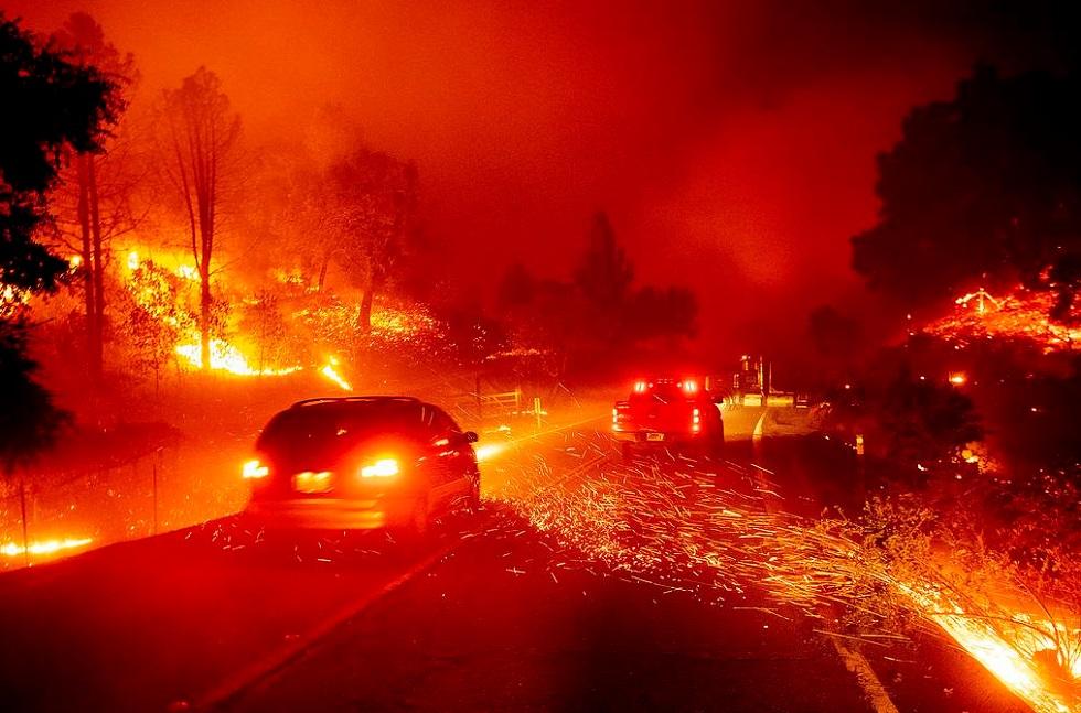 Пожары в Калифорнии тушат заключенные