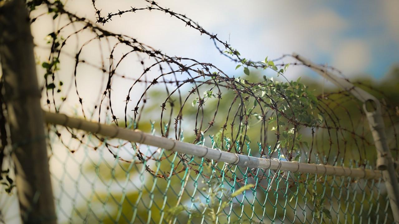 Жительницу Алматинской области подозревают в убийстве сожителя