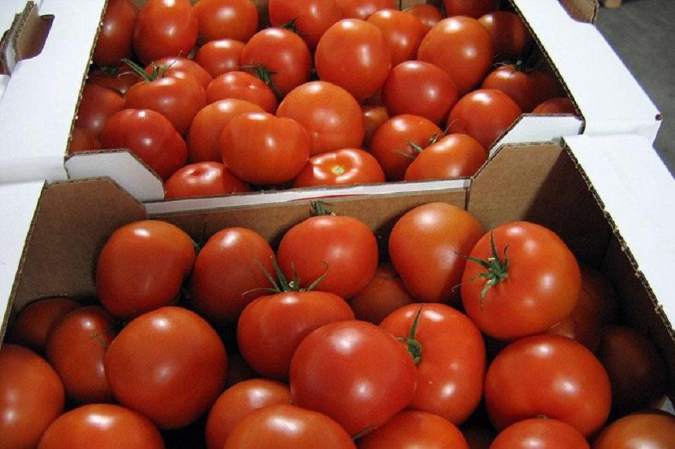 Десятки тонн опасных фруктов и овощей запретили  к ввозу в Казахстан