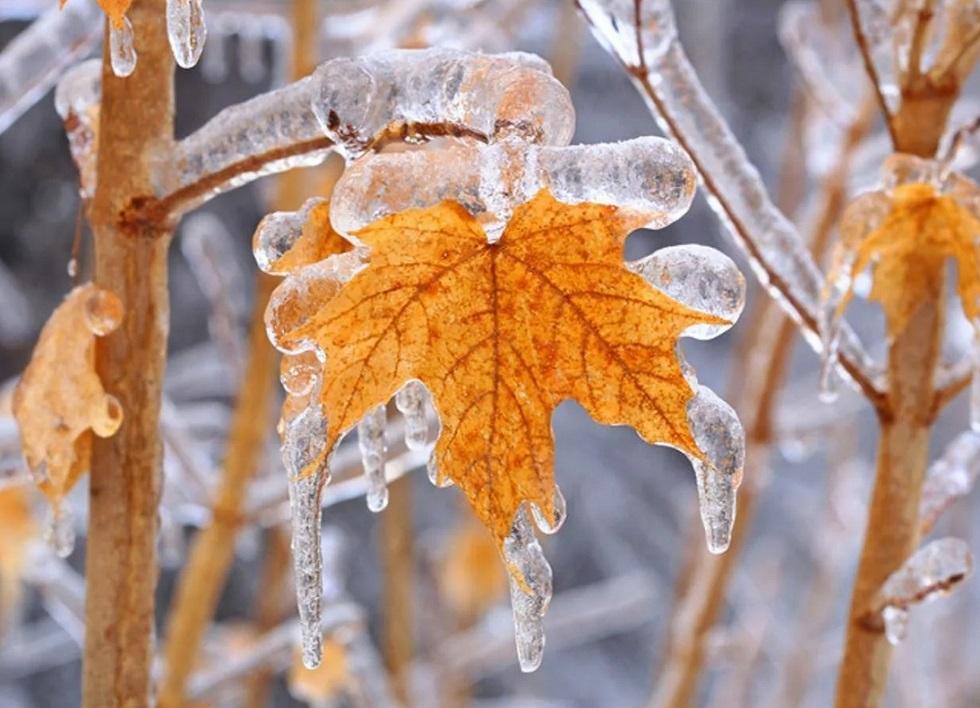 Снег, метель и резкое похолодание: погода в Казахстане 19 ноября 2019