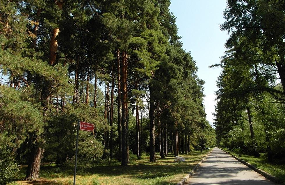 Ботанический сад Алматы не уйдет в ведение акимата города
