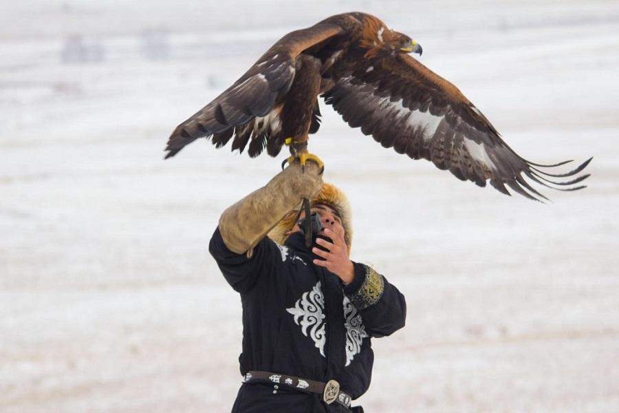 Турнир по охоте с ловчими птицами «Қыран-2019» завершился в Алматы