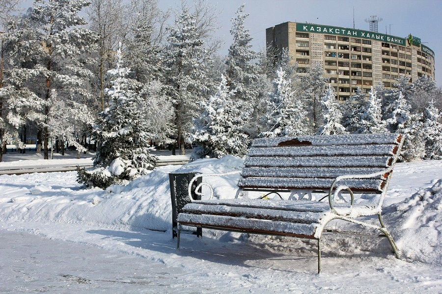 Сотрудники департамента экономических расследований вышли на уборку снега