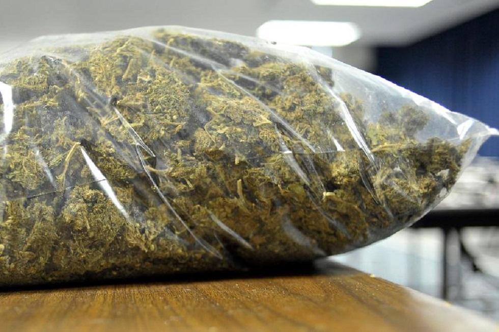 Трех человек задержали с более 200 кг марихуаны в Павлодарской области