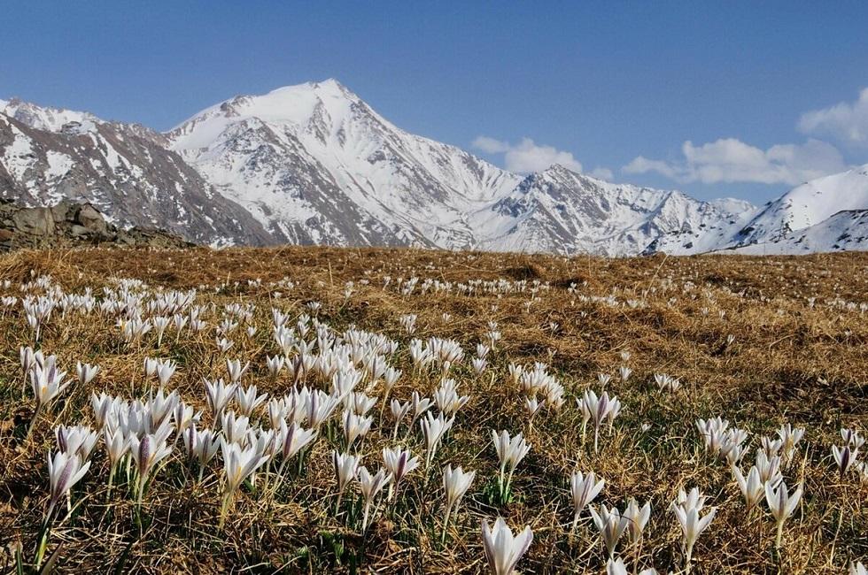 Погода в Алматы с 6 по 12 апреля 2020