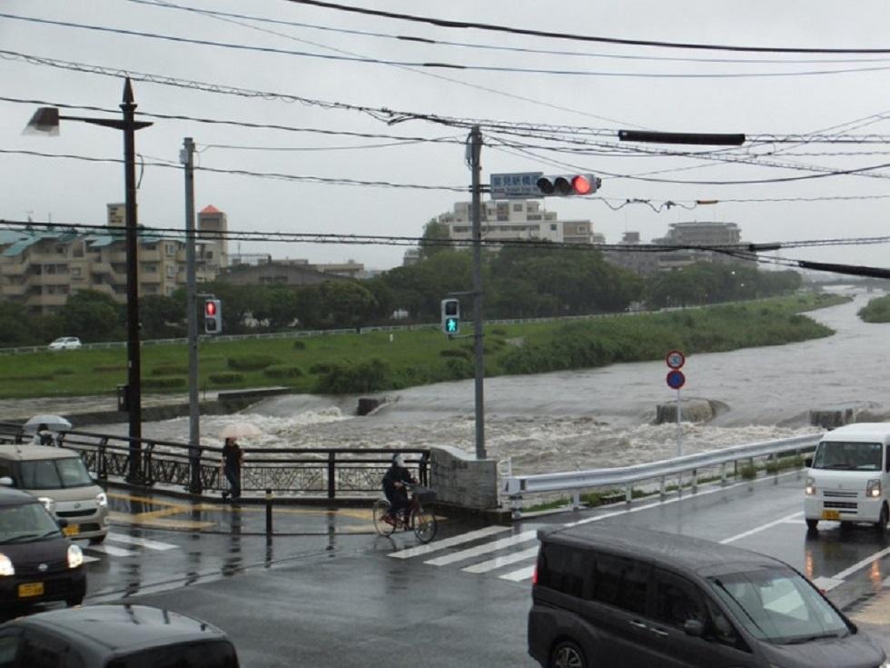 Ливни в Японии: погибли 50 человек