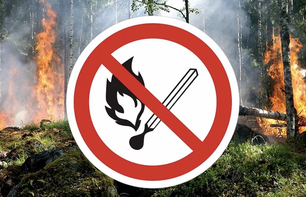 Алматинцам напомнили правила пожарной безопасности в предгорьях