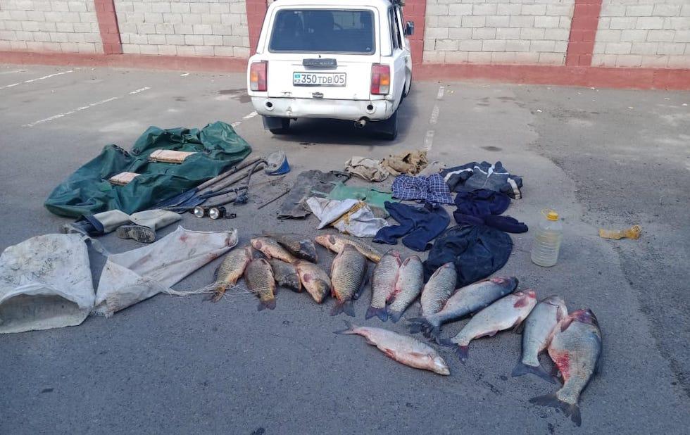 Улов на 90 кг: рыбаков задержали в Алматинской области