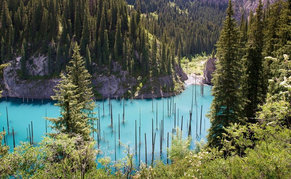 Затонувший лес: Каинды попало в топ самых красивых горных озер мира