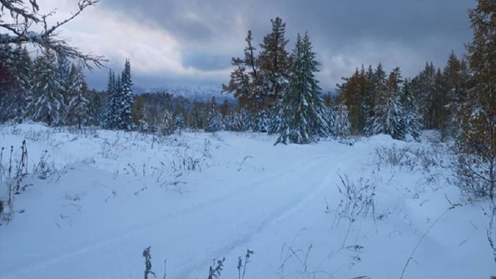 Восточно-Казахстанскую область засыпало снегом