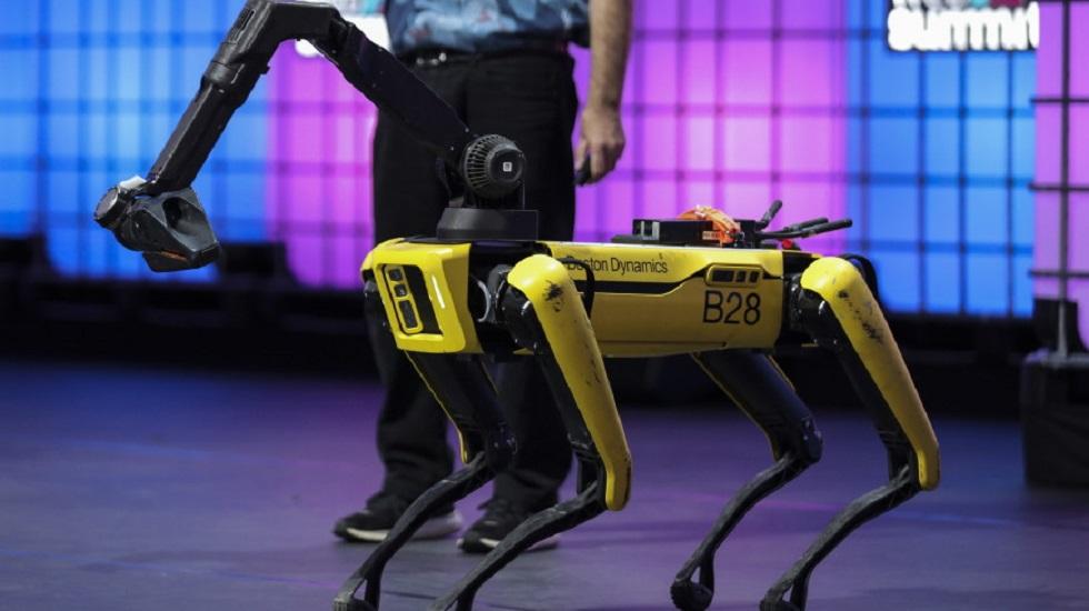 Роботы-собаки появились в Чернобыле: видео