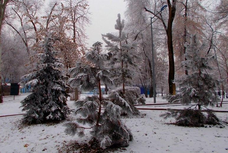Погода в Алматы с 23 по 29 ноября 2020