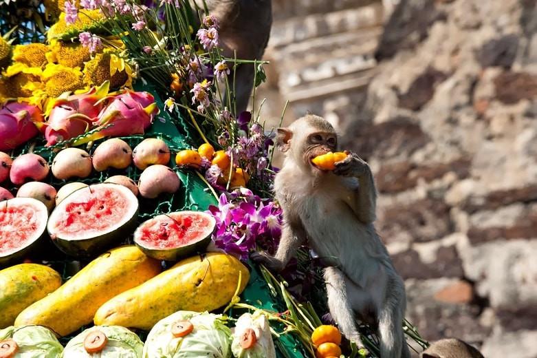 Удивительный фестиваль обезьян прошел в Таиланде