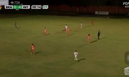 Четвероногий «футболист» хотел забить гол, но его удалили с поля
