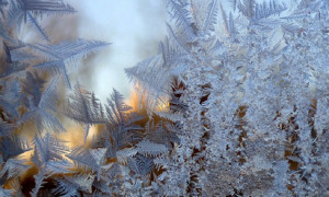 Мороз в ВКО: температура воздуха опустилась почти до -30 градусов