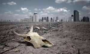 Земля вошла в эпоху массового вымирания - ученые