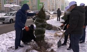 Алматының Наурызбай ауданында «Тәуелсіздік» аллеясы ашылды