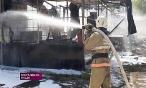 Герои 2020 года: с какими трудностями ежедневно сталкиваются огнеборцы