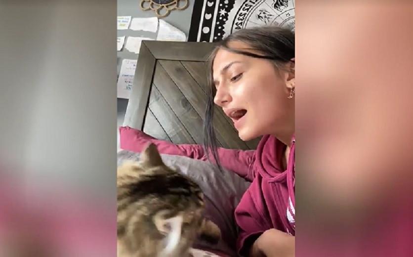 Кошка не оценила талант хозяйки и заставила ее замолчать