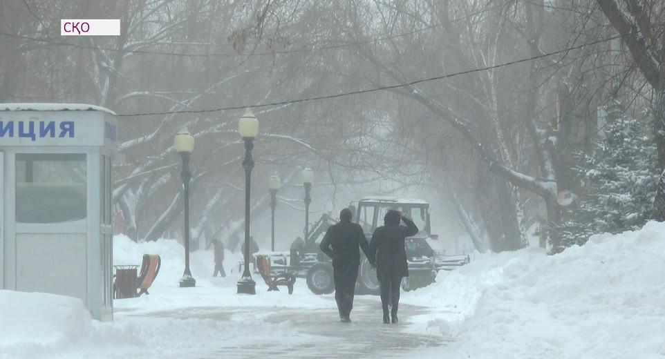 Сильный снегопад и буран в СКО: два пастуха ушли за скотом и не вернулись