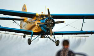 Самолет АН-2 совершил экстренную посадку в Алматинской области