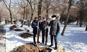 В Алматы ко Дню благодарности руководители этнокультурных объединений провели посадку Аллеи АНК