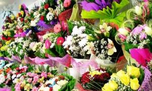 Как не ошибиться в цветах в качестве подарка на 8 марта - советы экспертов