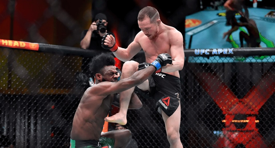 Петр Ян нанес запрещенный удар Алджамейну Стерлингу и лишился титула чемпиона UFC