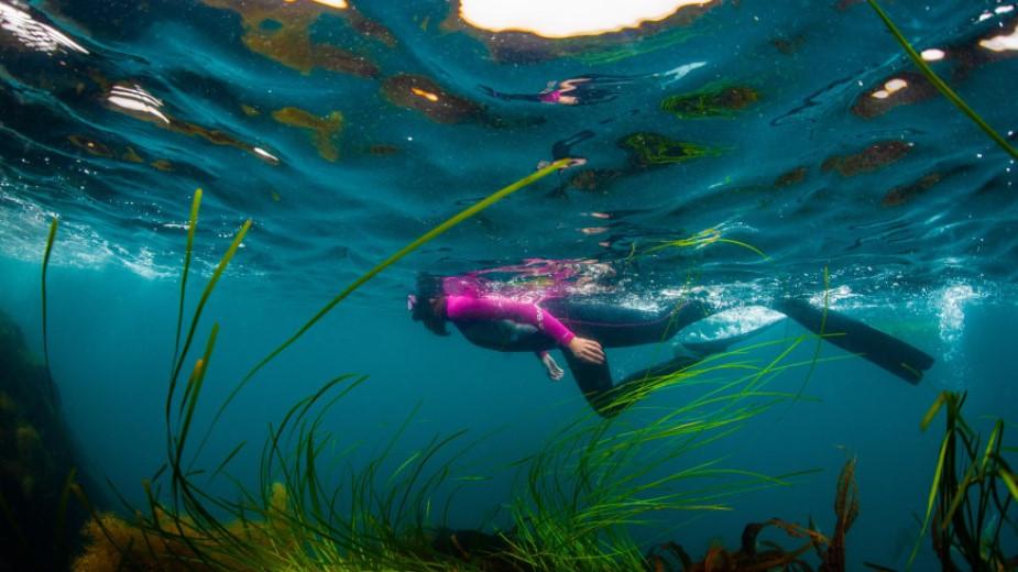 Задержал дыхание на три минуты: установлен рекорд в плавании подо льдом