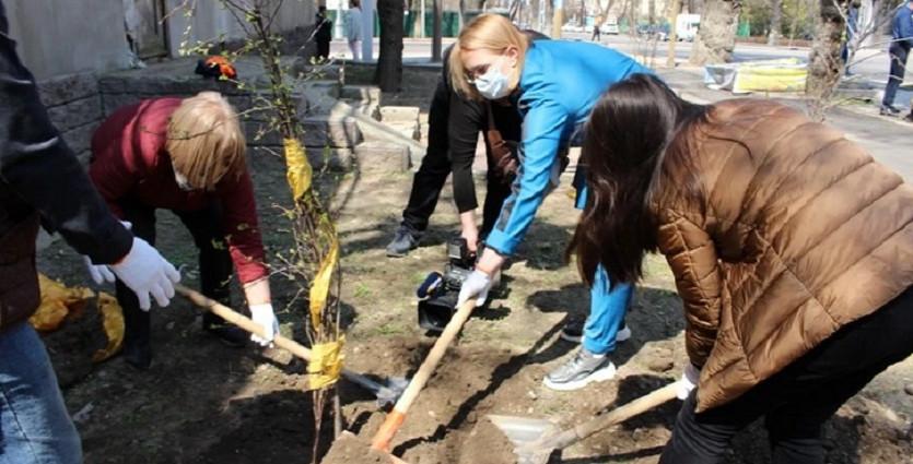 Жителям Алматы начали раздавать бесплатно саженцы