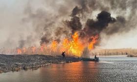 В Балхашском районе произошел пожар - видео