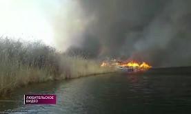 Пожар в Балхашском районе: огонь уничтожил охотничьи домики, транспорт и погубил скот