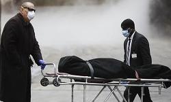 Число жертв COVID-19 по всему миру превысило 3 миллиона человек
