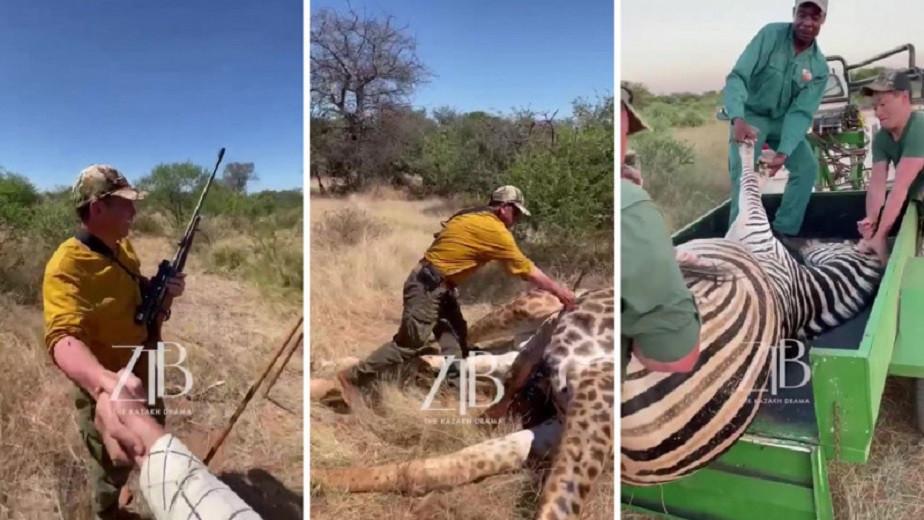 Экология министрлігі Африкада жануарларды атып өлтіргендерді қолдаған аңшыларға не деп жауап берді