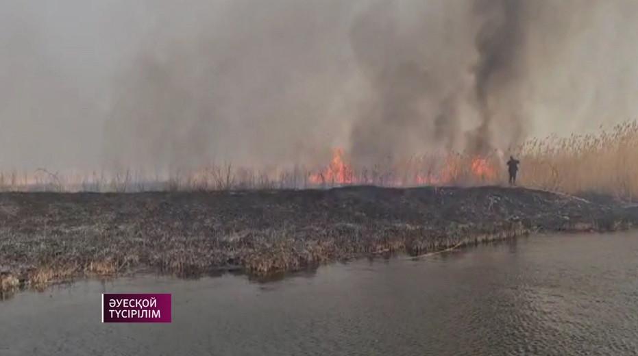 Алматы облысындағы алапат өрт өшірілді