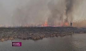 Пожар в Алматинской области: борьба с огнем длилась более трех дней