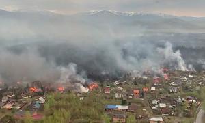 Лесной пожар в Восточном Казахстане: огонь перекинулся на 14 домов