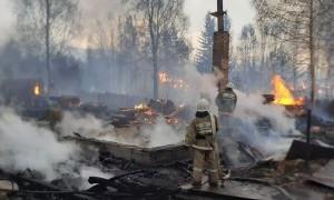 Лесной пожар в Восточном Казахстане - видео очевидцев