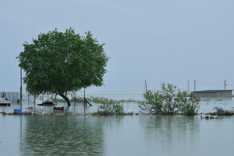 Мощное наводнение в Мактаарале: в Узбекистане осудили 17 человек