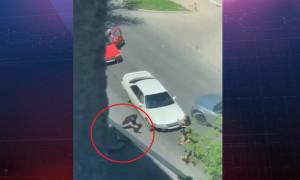 Дорожный конфликт: автомобилисты устроили драку на трассе - CRIME TIME