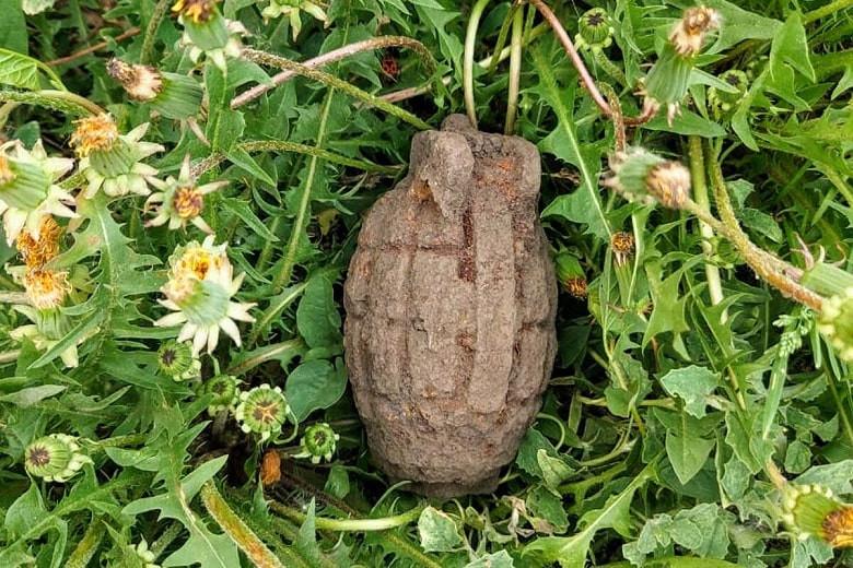 Опасный сюрприз через 100 лет: в СКО подросток нашел гранату в своем огороде