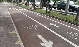 Велосипедные маршруты Алматы появятся в популярном навигаторе