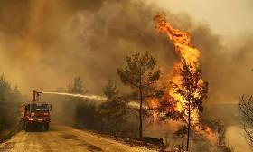 Организация «Дети огня» взяла на себя ответственность за пожары в Турции