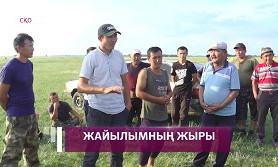 СҚО-да Бірлік ауылының тұрғындары жайылымсыз қалды