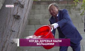 Олжас Сулейменов поддержал акцию по поливу деревьев в Алматы