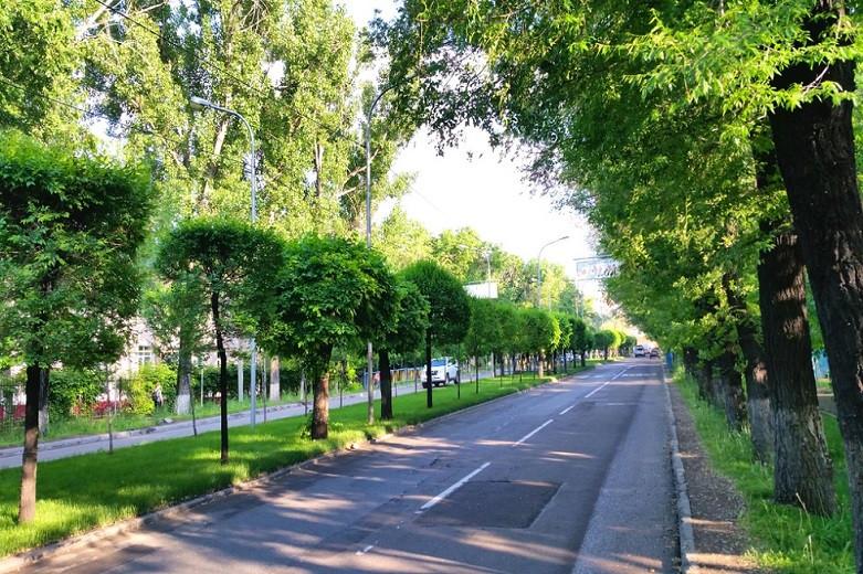 Сагинтаев призвал алматинцев активнее участвовать в конкурсе по озеленению