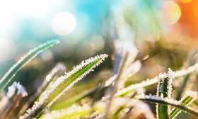 Еліміздің бірқатар аймағында күн суытып, үсік жүреді
