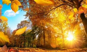 Осеннее равноденствие 22 сентября: какие чудеса происходят в этот день
