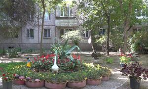 Алматинские сады Семирамиды: куда направят деньги жители самого зеленого двора