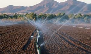 600 мың гектар суармалы жер қалпына келтіріледі – министр